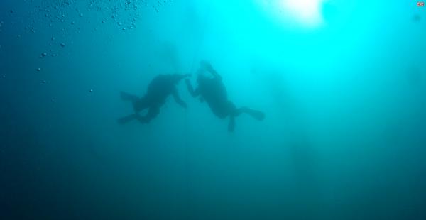 dykkere sikkerhedsstop